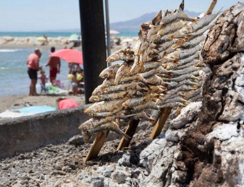 ¿Pasas el verano en Málaga? ¡Apunta estos planes!