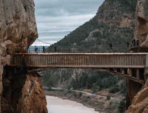 8 excursiones desde Málaga de ida y vuelta en 1 solo día